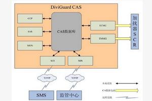 条件接收系统(CAS)
