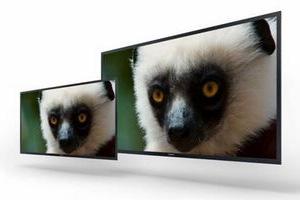 4K OLED 监视器
